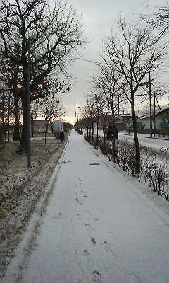 中標津も今季初の積雪です